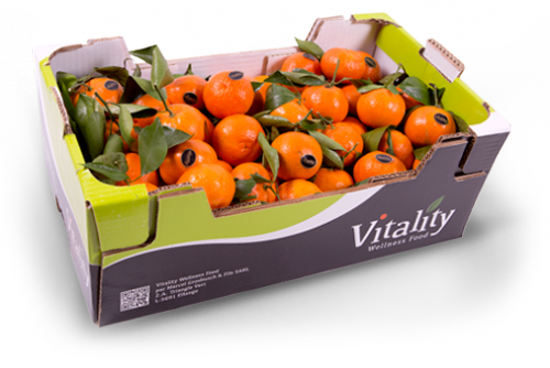 Top-quality, fresh fruit and vegetables